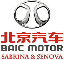 لوگوی شرکت بایک- قطعات سابرینا و سنوا